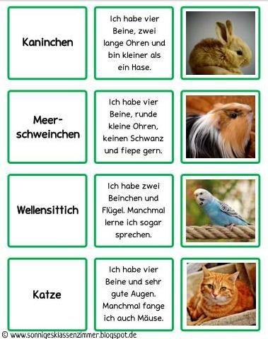Grundschulblog Zu Den Fachern Deutsch Englisch Sachkunde Und Kunst Legespiele Haustiere Spiele Im Unterricht