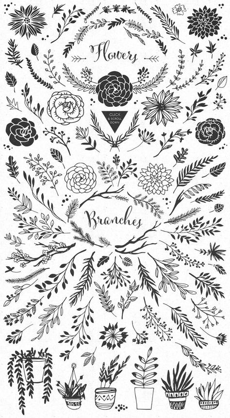 Handsketched Rustic elements by kite-kit on @creativemarket