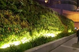 Image Result For Living Wall Lighting With Images Green Wall