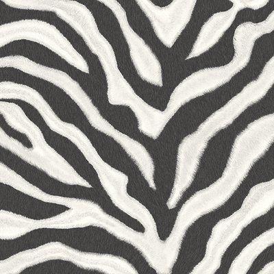 Gold Flamingo Carman 32 7 L X 20 5 W Wallpaper Roll Striped Wallpaper Zebra Striped Wallpaper Animal Print Wallpaper Black and white wallpaper zebra
