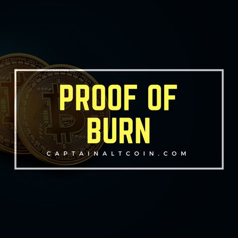 Cryptocurrency proof of burn