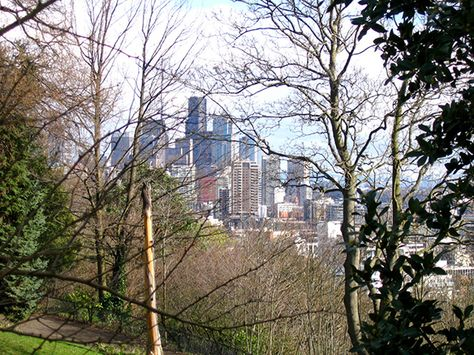 45 Best Things About Living In Seattle With Images Seattle