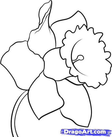 This Site Has Instructions For How To Draw All Kinds Of Things Search On The Flower You Want To Draw Or Just Flowers T Flower Drawing Drawings Plant Drawing