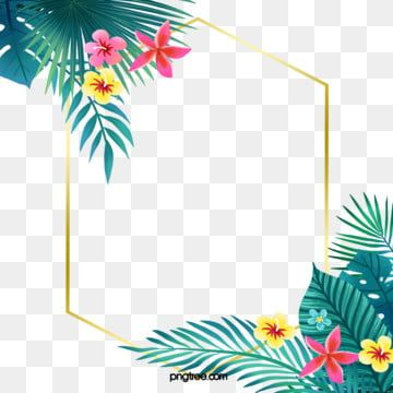 Colorful Tropical Plant Flower Borders Geometric Hand Painted Tropic Png Transparent Clipart Image And Psd File For Free Download Cute Flower Wallpapers Flower Border Png Flower Wallpaper