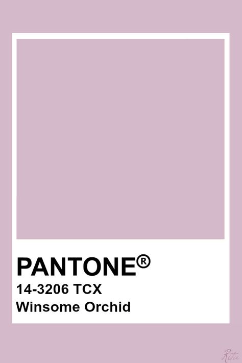 Pantone Winsome Orchid