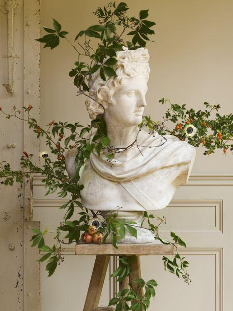 art fotografia Old-world art inspires the seasons most sensational winter floral designs, as in this holiday-themed bust. Plant Aesthetic, Aesthetic Art, Aesthetic Pictures, Aesthetic Vintage, Aesthetic Statue, Aesthetic Green, Aesthetic Fashion, Artemis Aesthetic, Apollo Aesthetic