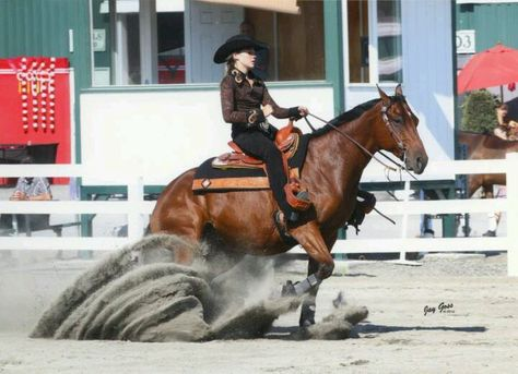 Gus is my old champion horse in reining thats my friend stef ridding him hes a great horse!!!