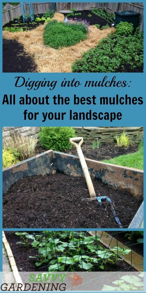 Start Digging Into Mulches By Getting The Low Down On Some Of The Best Types Of Landscape Mulch With Images Mulching Mulch Landscaping Garden Mulch