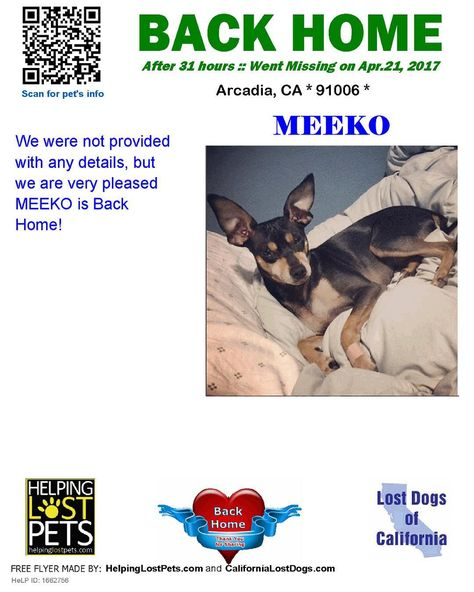 We Are Very Happy To Report Meeko Is Back Home After 1 Day Welcome Home Meeko Reunited Lostdogsca Helpinglost Losing A Dog Losing A Pet Pet Home