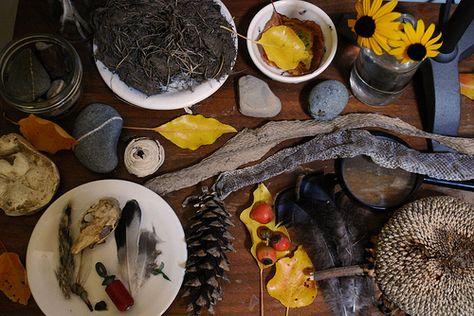 fall. nature table. | Flickr - Photo Sharing!