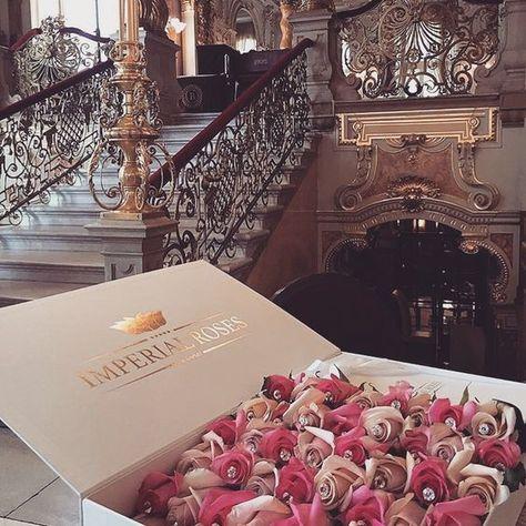 Wealthy lifestyle, millionaire lifestyle, jet set, luxury fashion, luxury l