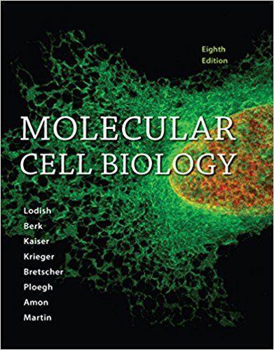 Molecular Cell Biology 8th Edition Harvey Lodish Isbn 10