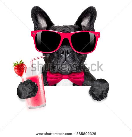 Funny Pet Bull Dog French Bulldog With Cocktail Smoothie Women/'s Tank Vest Top