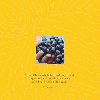Jeremiah 17 10 Nkjv New King James Version Bible Apps Bible Nkjv