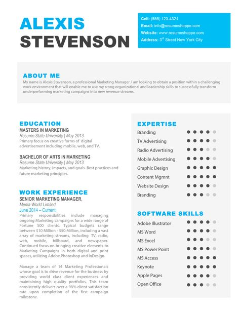 The Alexis Resume   Resume Shop    Creative Resume