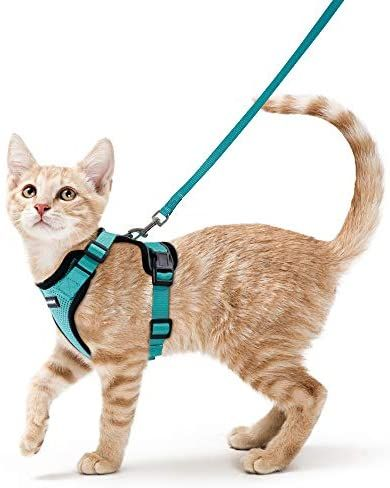 Rabbitgoo Cat Harness And Leash For Walking Escape Proof Soft Adjustable Vest Harnesses For Cat Harness Cat Leash Best Cat Harness