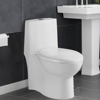 Concorde Dual Flush Elongated Wall Mounted Toilet Seat Included Wall Mounted Toilet One Piece Toilets Wall Hung Toilet