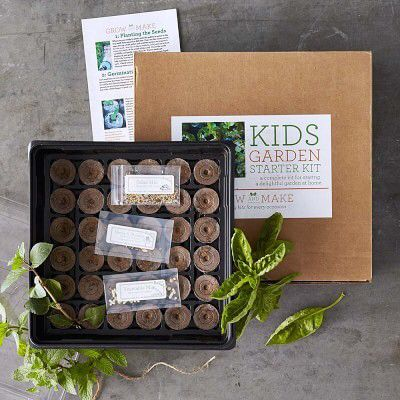 This Maybe A Great Starter Kit For The Kiddos Garden Seeds