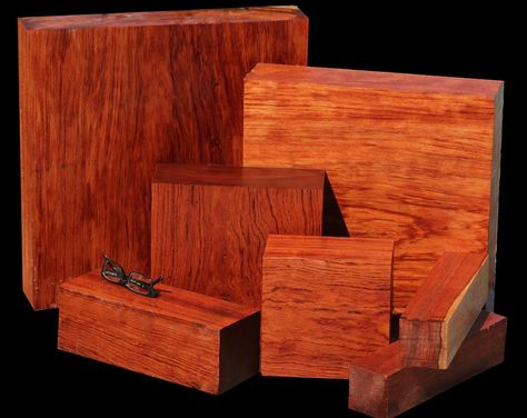 Most Expensive Wood For Furniture Making  Nature  Design. Most Expensive Wood For Furniture Making   Ever x Wood