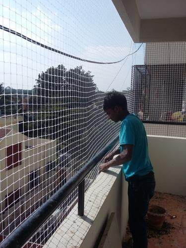 Looking For Pigeon Safety Net Bangalore Services Online Hicare Specializes In Residential Bird Netting Services Pigeon Bird Netting Clean House Bird Control