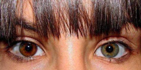 Colores De #Ojos Más #Extraños Del Mundo Colores De Ojos: Nuestro cuerpo tiene muchas cosas que son curiosas y asta extrañas, una de ellas son nuestros ojos. Y Todos los tenemos de diferentes colores, incluso algunos llegando hacer muy extraños. Hoy te mostrare algunos de los colores de ojos más extraños del mundo.  Colores De Ojos Color verde  Aunque sea conocido. Sólo #colordeojos #datos