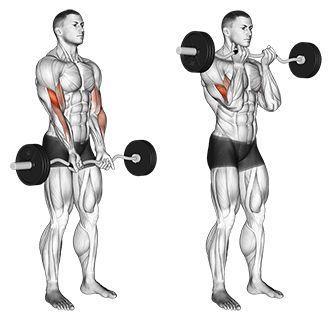 Beste Übung für Gewichtsverlust Männer