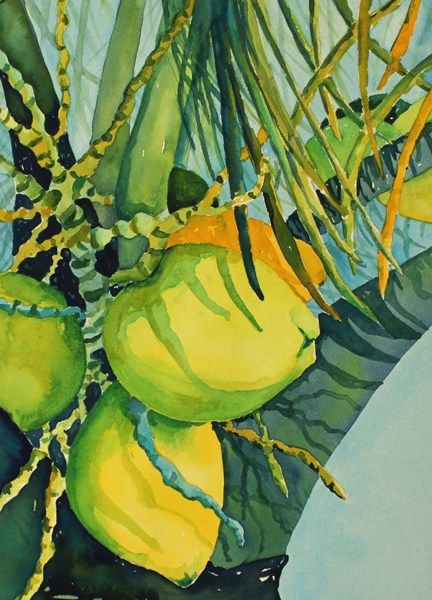 Coconut Palm Tree In Watercolor Fruit Painting Caribbean Art