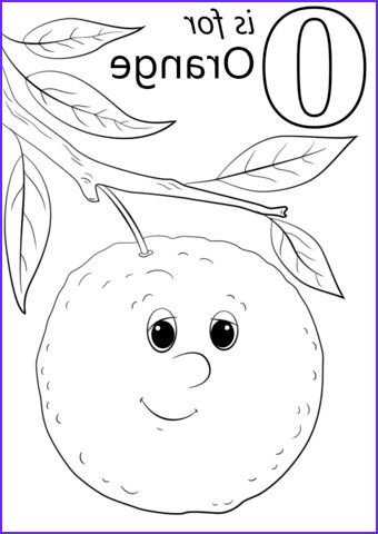Orange Coloring Page Coloring Page Orange Img 5872 Free Oranges