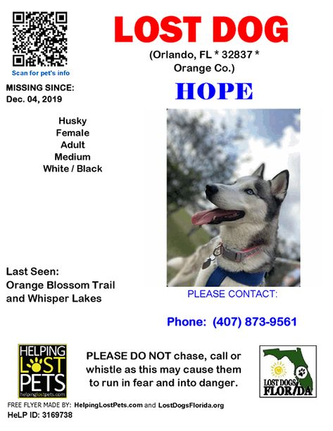 Hope Is Lost Have You Seen Her Hope Is Wearing A Pink Collar
