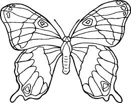 Butterfly Mandala 3 Ausmalbilder Malvorlagen Malbuch Vorlagen