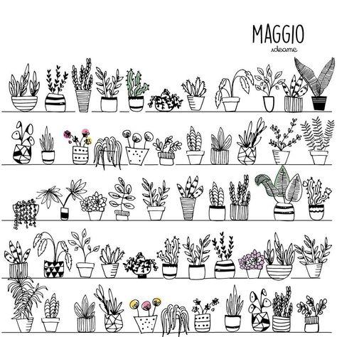 fiori Maggio é arrivato da un pezzo...