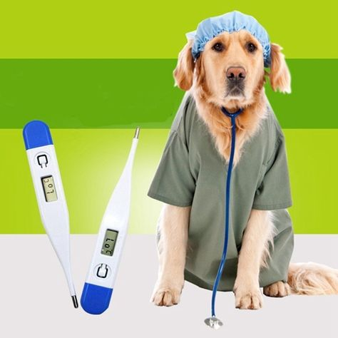 Decdeal Animal Thermometer Digital LED Display Thermometer Fast Reading Accurate Waterproof Pet Digital Medical Thermometer for Dogs Horse Cats Pigs Sheep