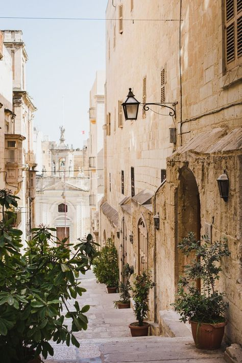 Shrubs embellishing Triq Santa Lucija Valletta, Malta on the Grand Harbour Side. Places To Travel, Travel Destinations, Places To Visit, Travel Around The World, Around The Worlds, Photos Voyages, Stonehenge, Travel Aesthetic, Future Travel