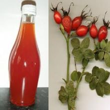 Find here Delicious Vitamin C-Rich Rose Hip Syrup Recipe to prevent and treat colds, flu, and vitamin C deficiencies. It's versatile and you can also use it instead of maple syrup on deserts.