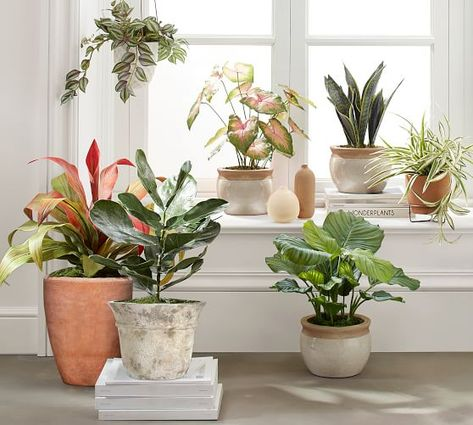 Coolest diy planter ideas for make your happy healthy 47