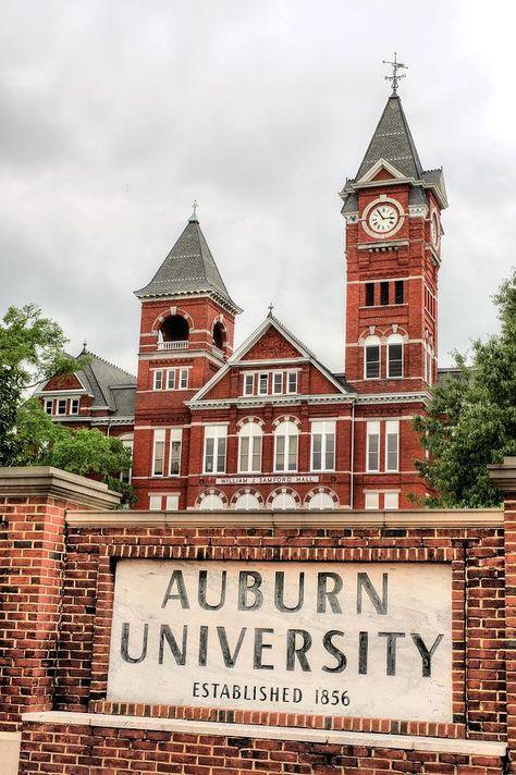 Samford Hall Photograph - Auburn University by JC Findley Auburn Alabama, Auburn Football, Auburn Tigers, Auburn Campus, College Football, Going Back To College, My College, College Campus