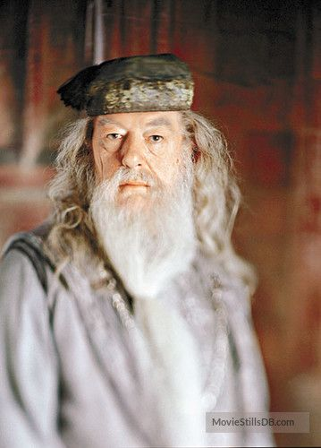 Harry Potter And The Goblet Of Fire Promo Shot Of Michael Gambon Albus Dumbledore Harry Potter Harry Potter Dumbledore Harry Potter Movies
