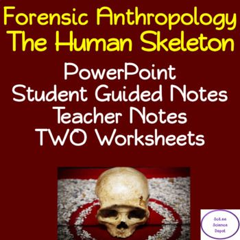 The Forensics Anthropology Human Skeleton Lesson Includes A Powerpoint With Embedded Video Clip Links Illustrated Studen Student Guide Guided Notes Forensics
