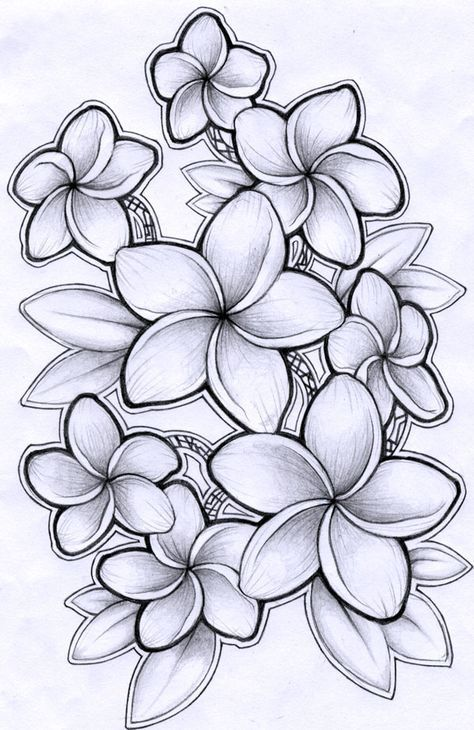 28 Ideas Tattoo Leg Sleeve Color Ribs For 2019 Plumeria Tattoo Hawaiian Flower Drawing Flower Drawing