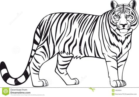 lion color page, tiger color page, plate, coloring sheet,printable - copy coloring pages of tiger face