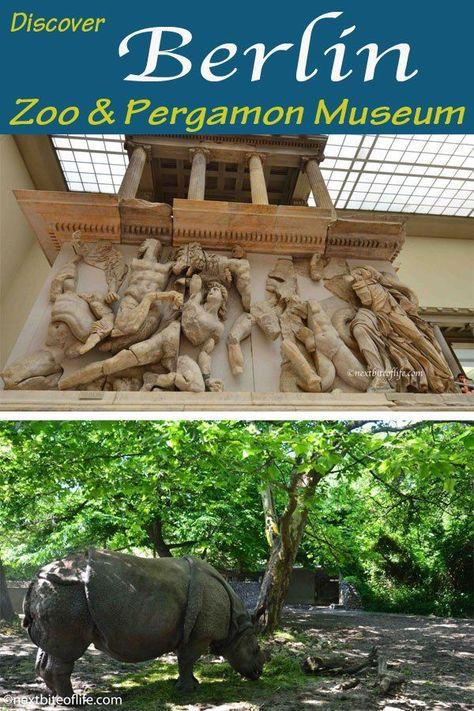 Berlin zoo and Pergamon Museum Visit #mustvisitberlin #visitberlin #pergamon #berlinzoo #berlinguide #mustseeberlin #berlin #germany