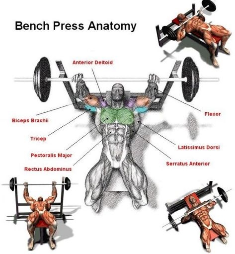 6 Technique Points To Increase Bench Press Weight Gym Artk