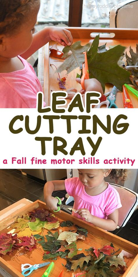 CUTTING TRAY A quick and easy Fall fine motor scissor skills activity cutting leaves. It is something you can do after a nature walk.A quick and easy Fall fine motor scissor skills activity cutting leaves. It is something you can do after a nature walk. Cutting Activities, Fall Preschool Activities, Motor Skills Activities, Nature Activities, Preschool At Home, Preschool Learning, Toddler Activities, Sensory Activities, Preschool Curriculum