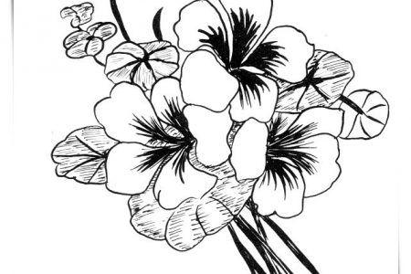Pin En Flores