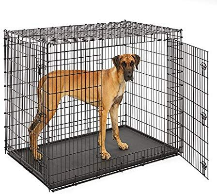 Amazon Com Midwest Homes For Pets Xxl Giant Dog Crate 54 Inch Long Ginormous Double Door Dog Crate Idea In 2020 Extra Large Dog Crate Large Dog Crate Xxl Dog Crate