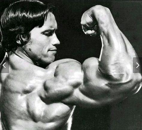 Arnold Schwarzenegger Mr Olympia Fisicoculturismo