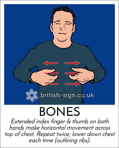 Today's #BritishSignLanguage sign is: BONES - #WorldOsteoporosisDay