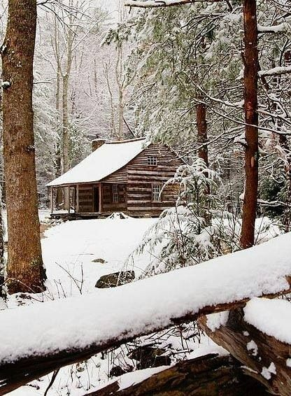 Snowy Log Cabin In The Woods