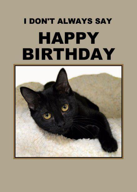 Black Cat Birthday Meme : black, birthday, Black, Birthday, Humor, Zazzle.com, Humor,, Funny, Cards,, Cards