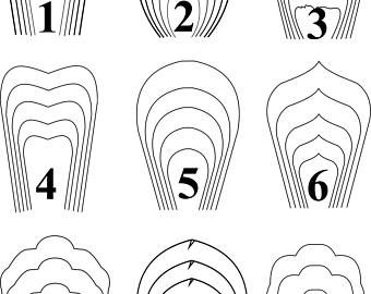 graphic relating to Printable Stencil Paper known as offer 2-All 20 PDF SVG Paper Flower Template huge paper